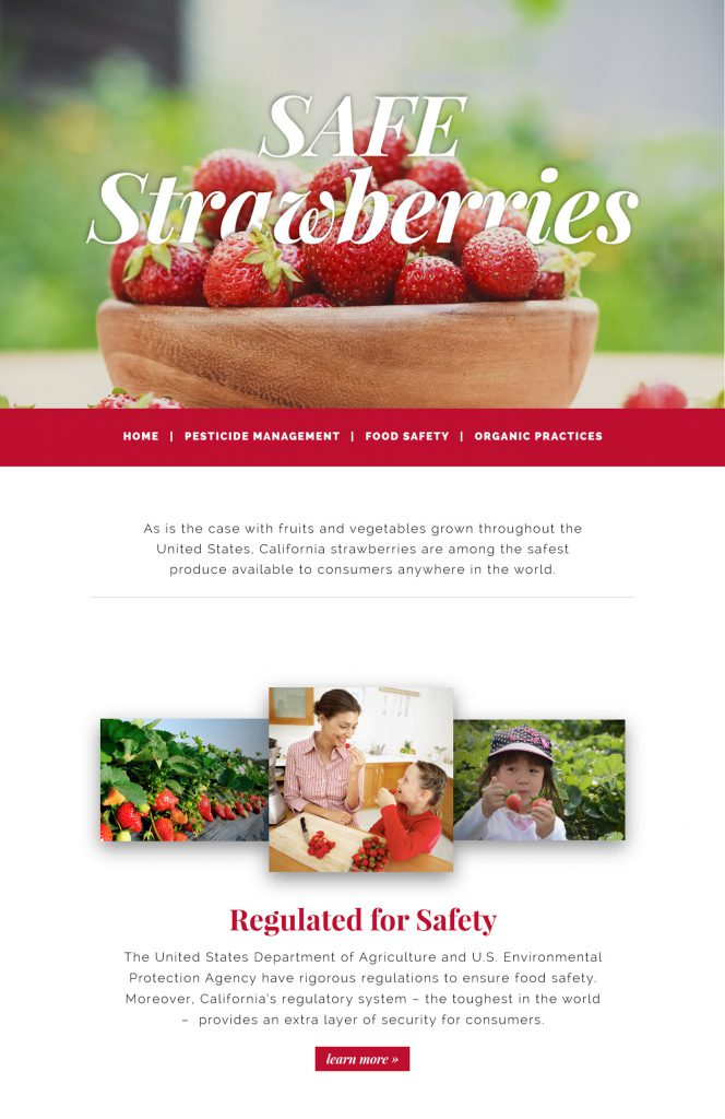 safe-strawberries-homepage-cropped
