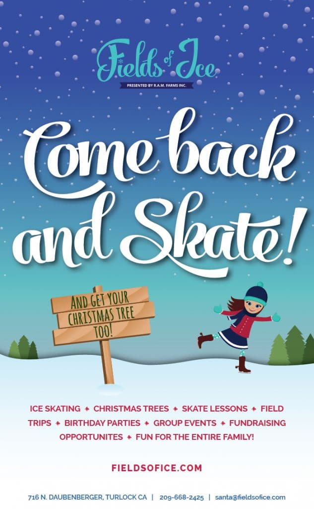 Come back & Skate Flyer