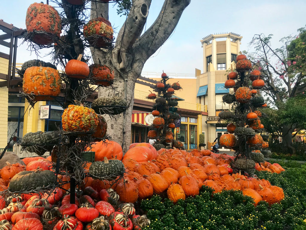 downtown-disney-pumpkins